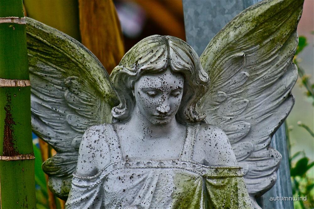 Angel by autumnwind