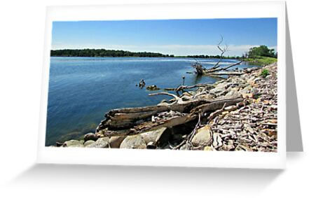 Shores of Kettle Lake by Greg Belfrage
