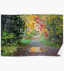 Fall tapestry Poster