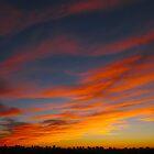 Cinnamon sky by MarianBendeth