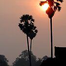 Dawn breaks at Angkor Wat by Paige