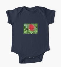 Beautiful Bottle Brush Flower With Garden Background One Piece - Short Sleeve