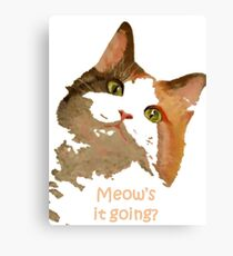 Meow's It Going Canvas Print