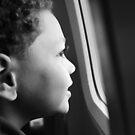 First Flight Wonder  by Allison  Flores