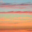 5 AM Sunrise  by Allison  Flores