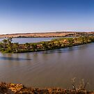 Murray Princess - Bow Hill by Dave  Hartley