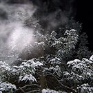 Blowing Snow by MaryinMaine