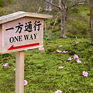 One way warning sign by Cebas