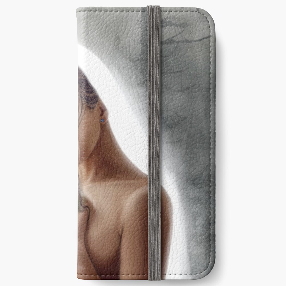 Those who protect and save iPhone Flip-Case