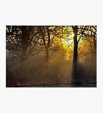 Streaming Light Photographic Print