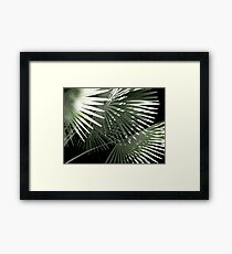 Shapes of Hawai'i Framed Print