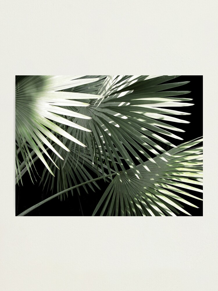 Alternate view of Shapes of Hawai'i Photographic Print