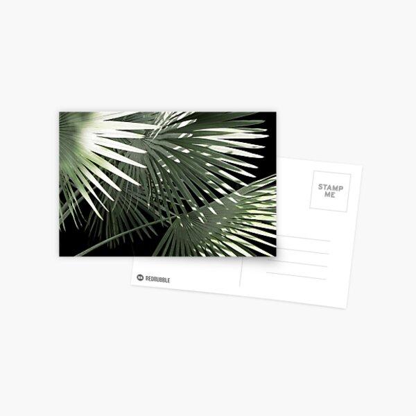 Shapes of Hawai'i Postcard