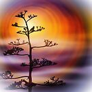 Sunset Bird by CarolM