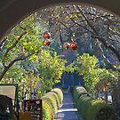 A suburban decorated botanical garden ! by Anthony Goldman