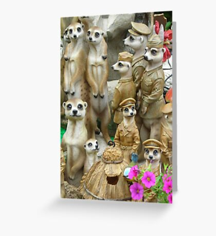 Meerkat.stall Greeting Card