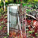The Gate by SueAnne
