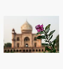 Mughal Flower Photographic Print
