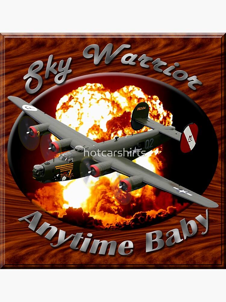 B-24 Liberator Sky Warrior by hotcarshirts