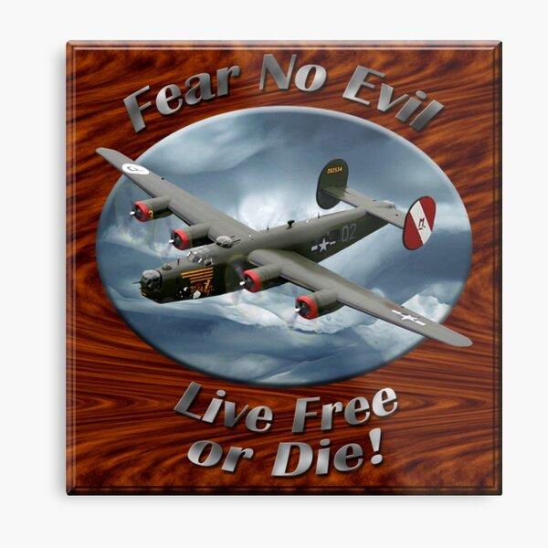 B-24 Liberator Fear No Evil Metal Print