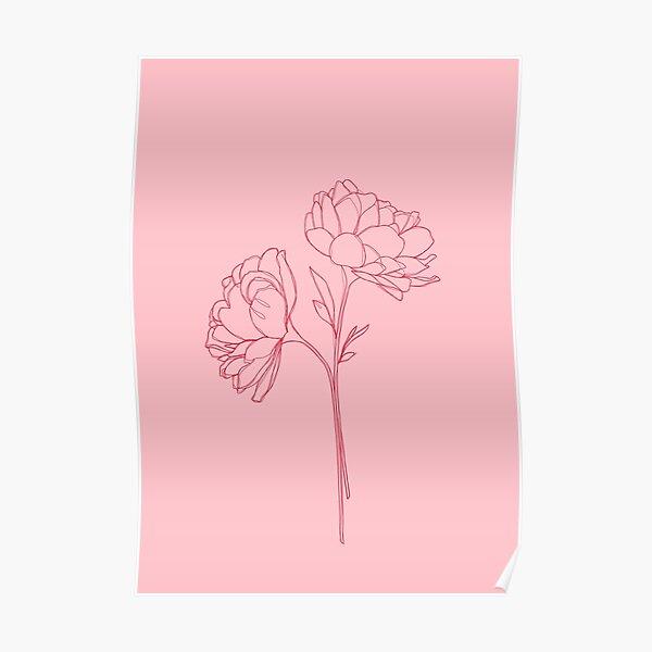 Peony botanical illustration - Bonnie Poster