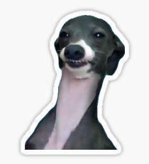 wyd Hund um Sticker