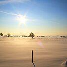 winter wonderland by Loise  Elisabet