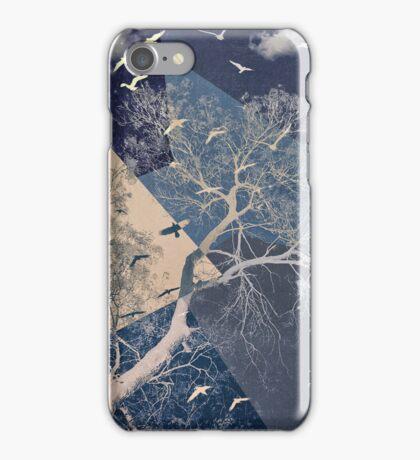The Sky iPhone Case/Skin