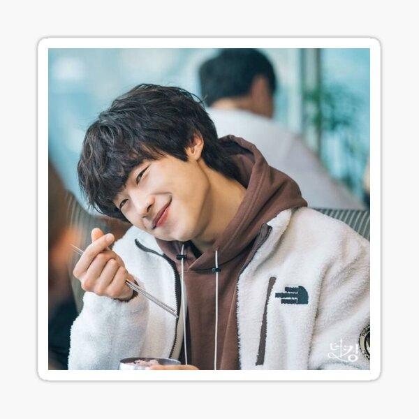 woo do hwan Sticker
