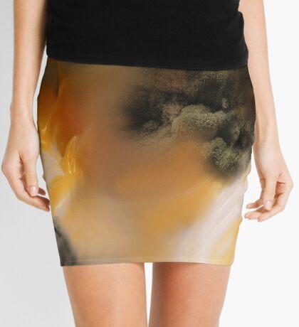 Amber river Mini Skirt