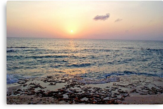 Caribbean Sunset over Seven Mile Beach in Grand Cayman by Amy McDaniel