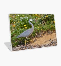 White Faced Heron  Laptop Skin