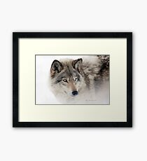 ...see you next week my friend Wolf.... Framed Print