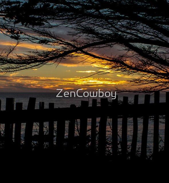 Mendocino Fenceline by ZenCowboy