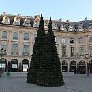 Christmas Tree on Place Vendome, Paris by Elena Skvortsova