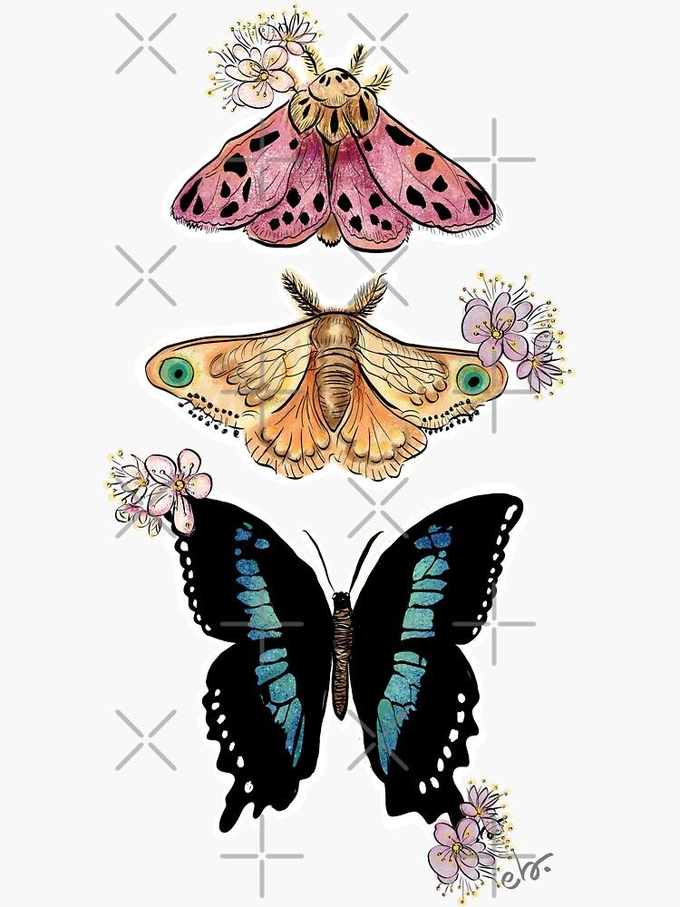 Butterflies & Moth with Blooms by ebozzastudio