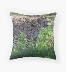 Marking my territory Throw Pillow