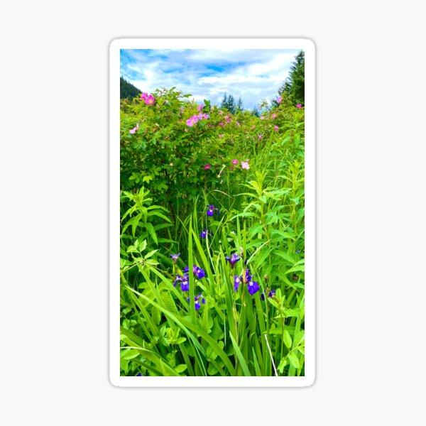 Alaskan Wild Iris and Sitka Roses Sticker