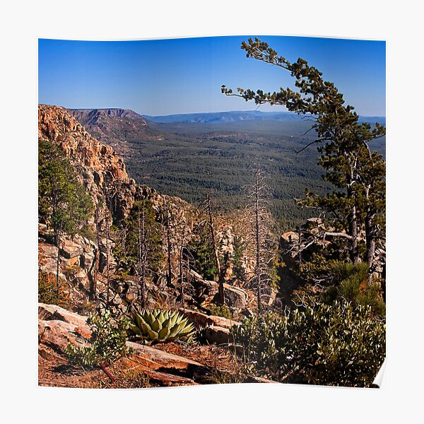 On the Edge of the Mogollon Rim Poster