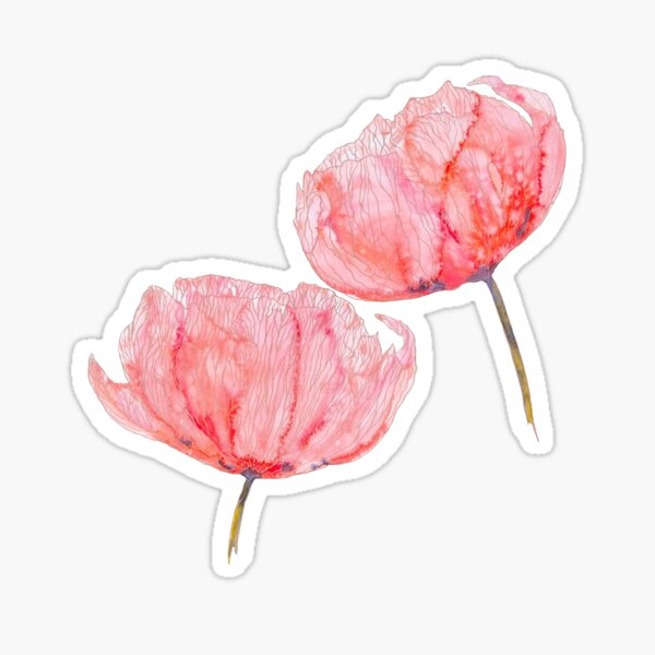 Red Watercolor Flowers Sticker