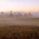 Cumbrian Mist by mikebov
