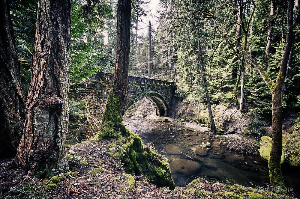 Quot Stone Bridge Over A Creek In The Forest Wall Art The
