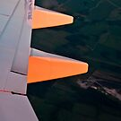Sun painting the wing red by Inese