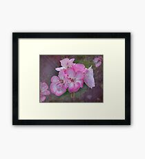 Pretty Blossoms Framed Print