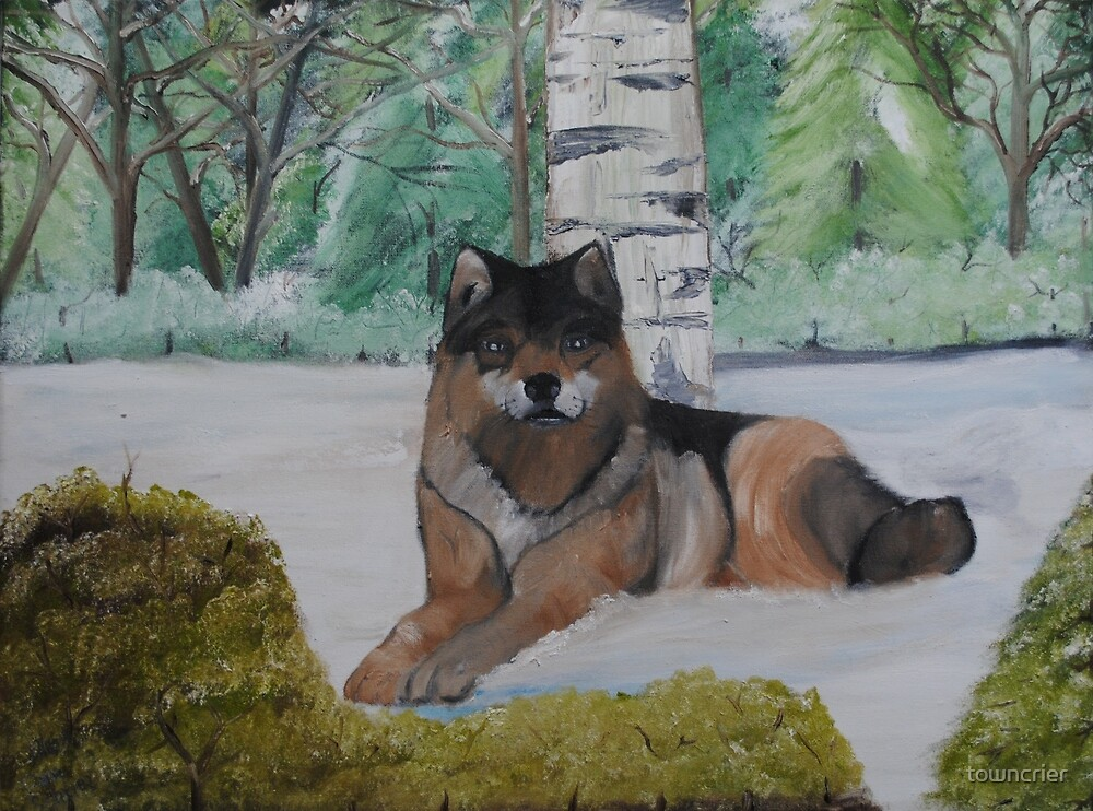 Wolf in front of Birch Tree by towncrier
