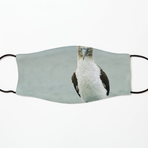 blue-footed booby Kids Mask