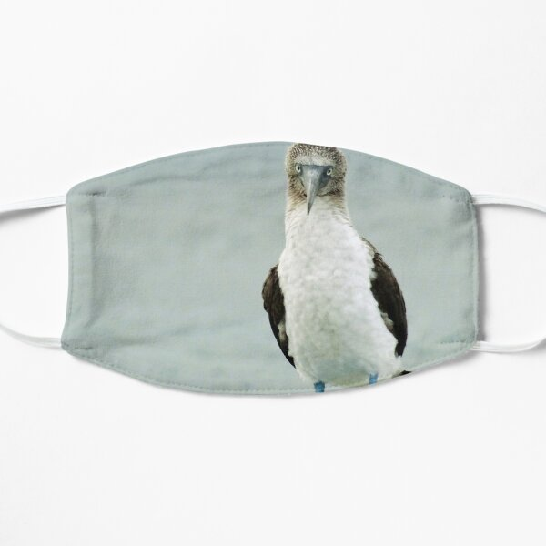 blue-footed booby Mask