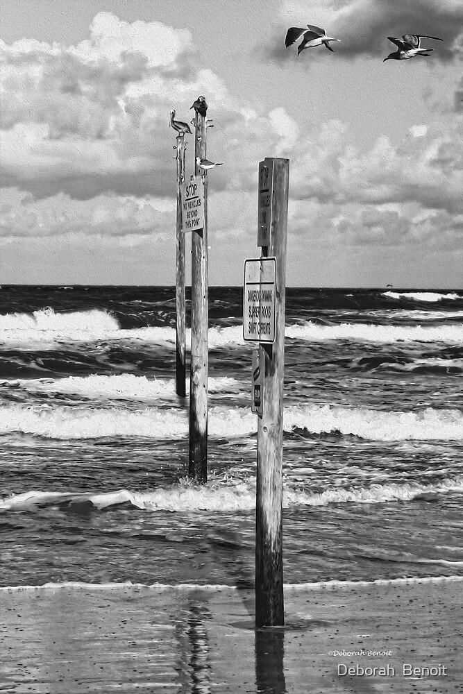 Moody Beach Day by Deborah  Benoit