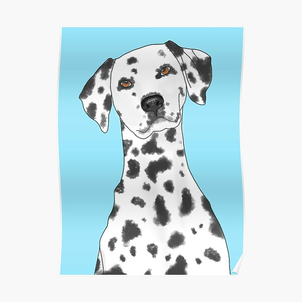 Dalmatian Dog Flat Pouch Dog Gift Dog Lover Gift Zipper Pouch Dog Birthday Gift Gift For Her Makeup Pouch Dalmatian Gift Polka Dot