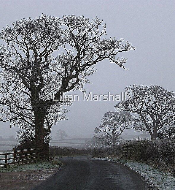 a Foggy Day. by Lilian Marshall